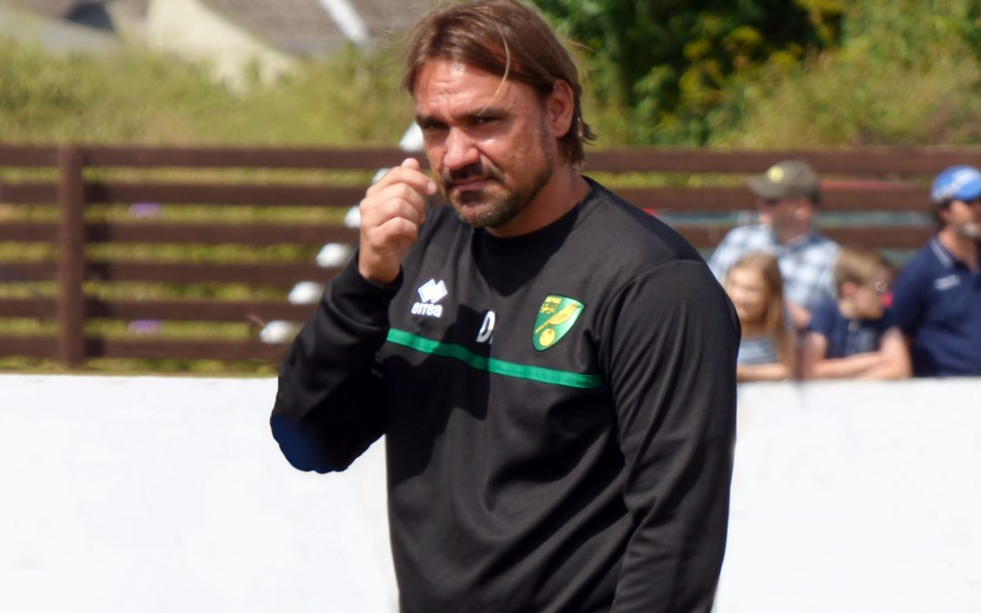 Lower League: Canaries In Top Flight